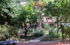 Monolocale Menfi Porto Palo - Menfi Porto Palo,Piccolo monolocale, annesso alla casa 900197