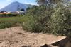 Antico palmento Quattropani Lipari