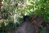 sentiero sterrato per raggiungere la casa