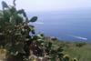 Casetta del fico di india Leni Salina