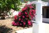 giardino / doccia esterna