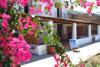 giardino / appartamenti
