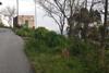 Villa ginestra Salina