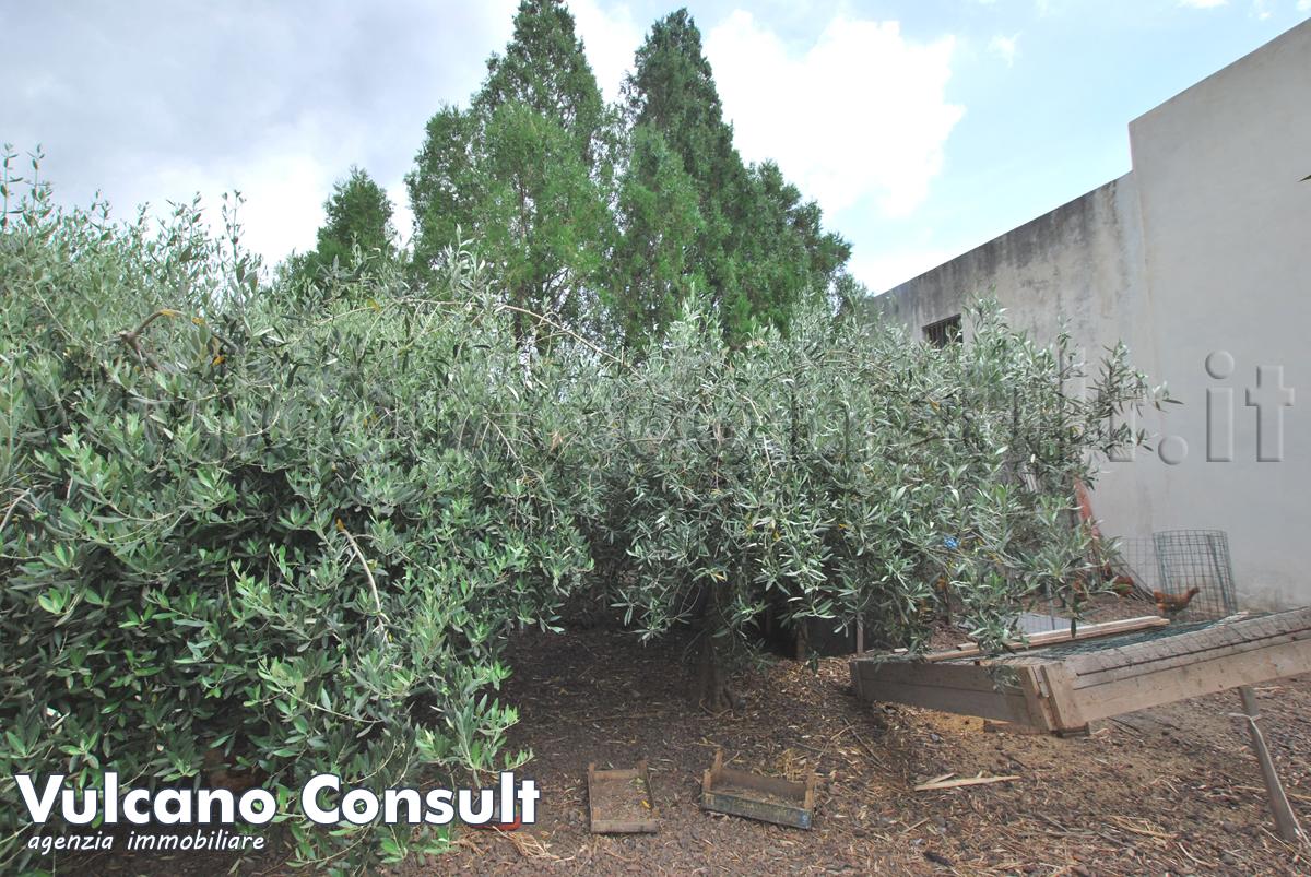 Fabbricato con terreno Santa Marina Salina