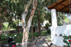 ingresso villa/giardino