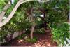giardino / villa