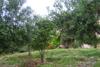 giardino casa zingaro