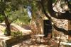 terrazzino / giardino