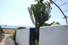 Villetta sul mare Stromboli