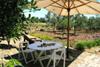 giardino / terrazzo attrezzato