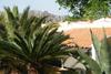 villa / giardino