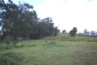 Il terreno